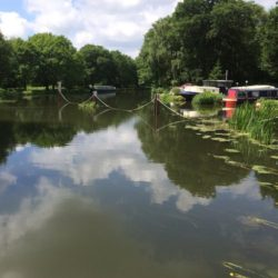 River Wey scene
